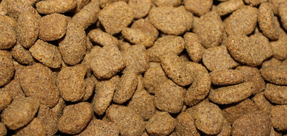 Dog Food Tailored To Your Dog Delivered To Your Door