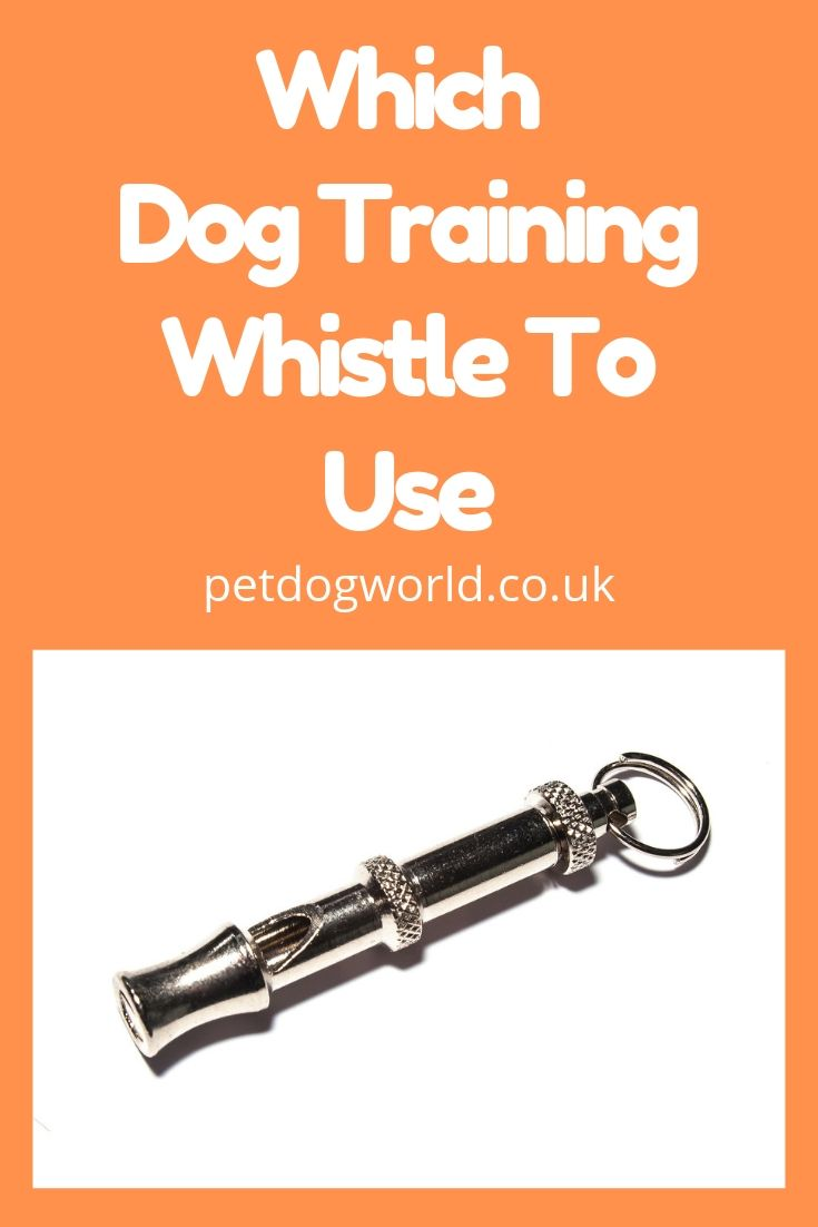 Which dog training whistle to use