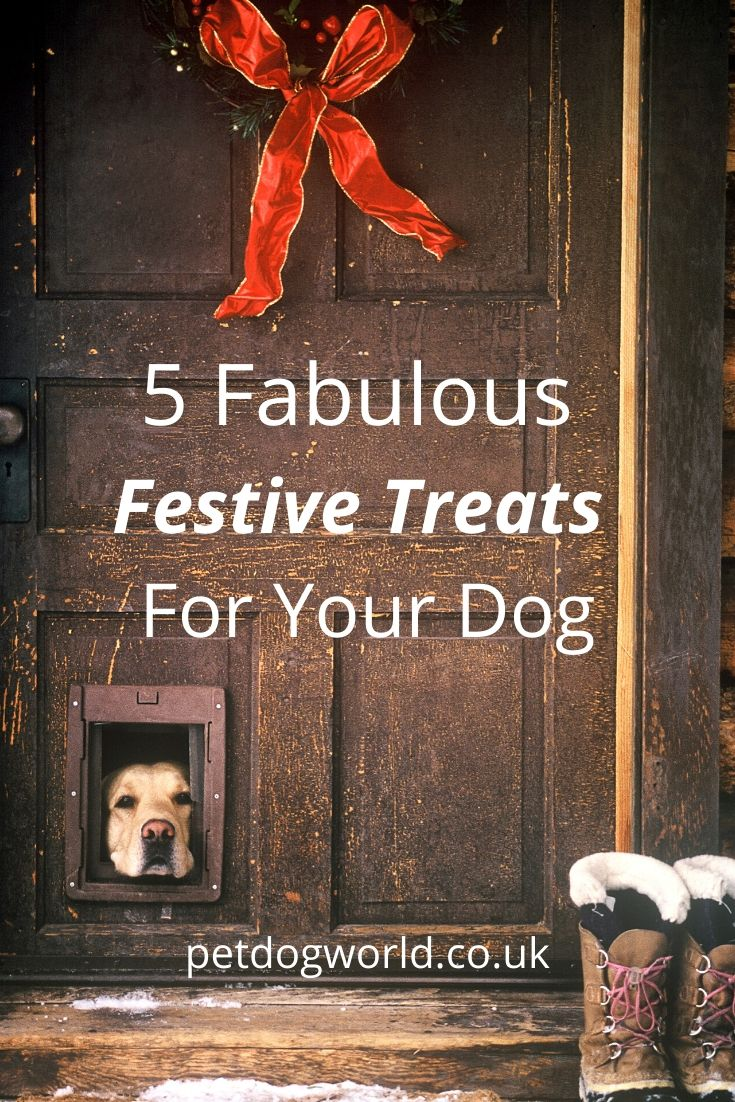 5 Fabulous Festive Treats For Your Dog