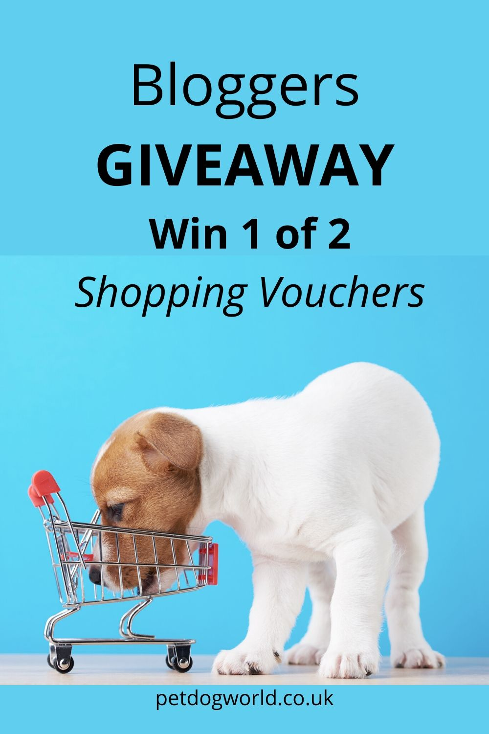 As so many of us are struggling financially right now, Pet Dog World has teamed up with some fellow bloggers for a great giveaway. We have over £100 worth of supermarket vouchers to help two lucky winners with their grocery shopping!