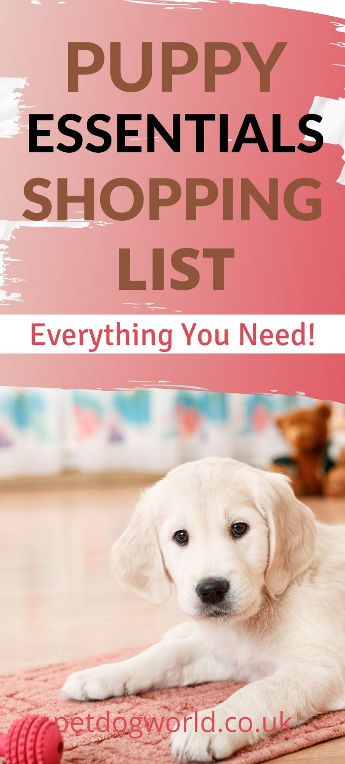 Puppy essentials shopping list, everything you need.