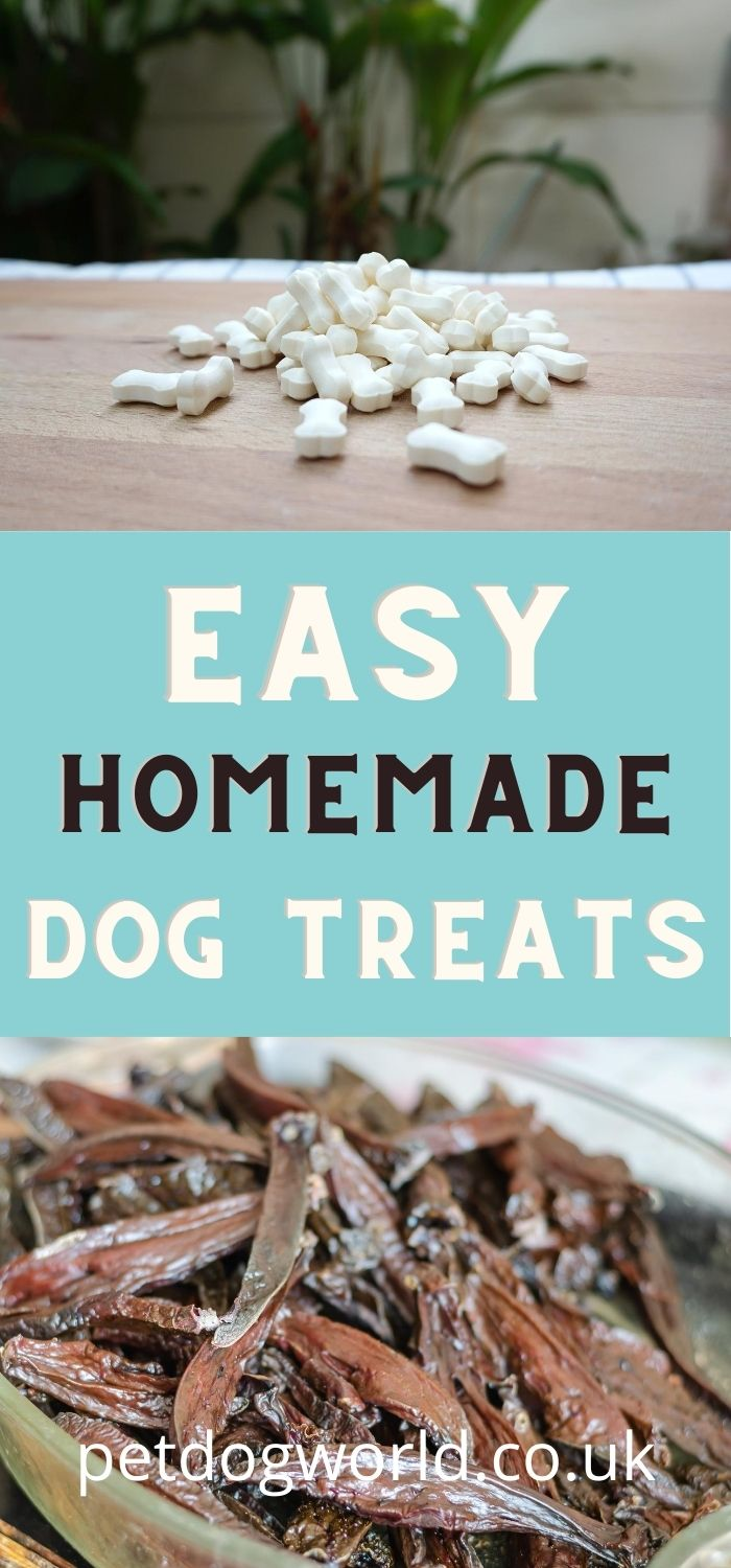 Making dog treats at home is easy and cheap, and as an added advantage, you will know exactly what you are giving your canine companion.
