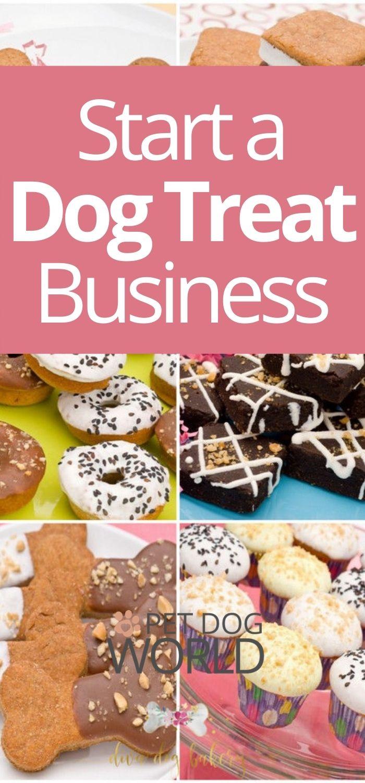 Start a dog treat business!