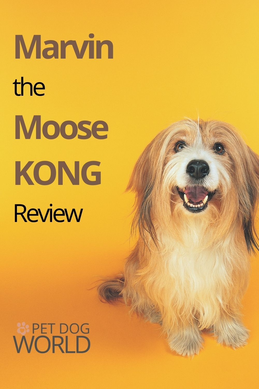 Marvin the Moose KONG Review