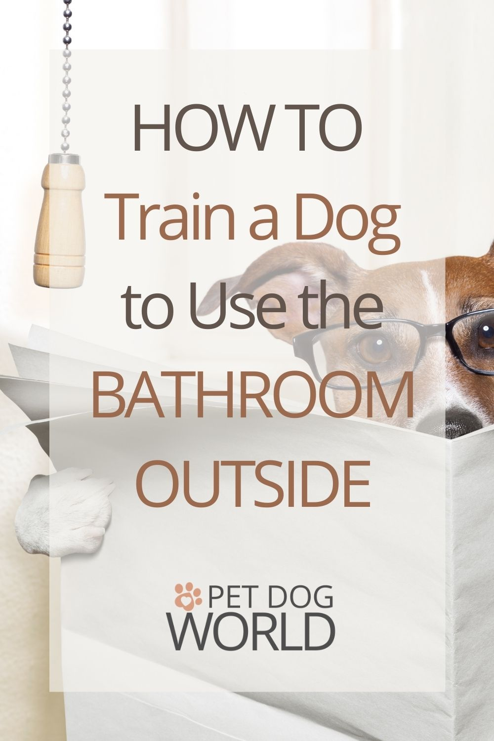 How to train a dog to use the bathroom outside