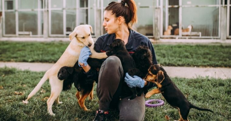 A woman fussing dogs at a dog shelter