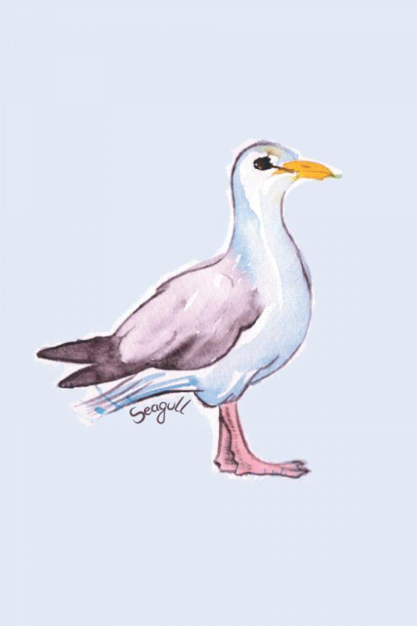 Seagull notebook journal