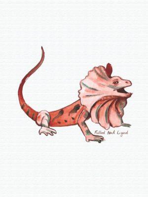 Frilled neck lizard notebook